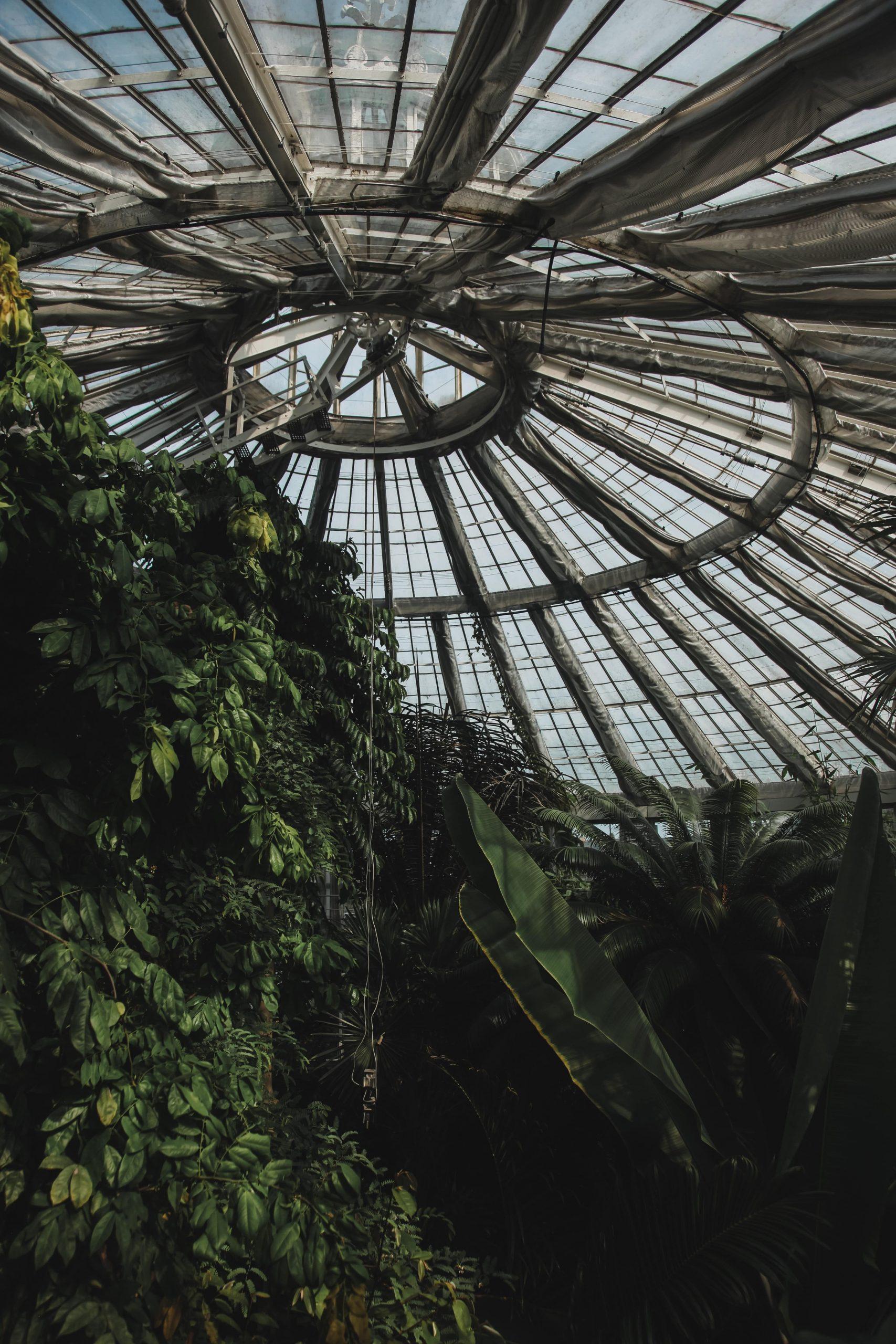 botanic garden Copenhagen
